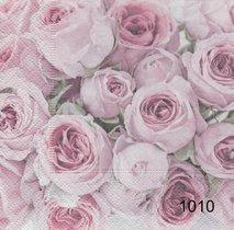 Rosor   sag1010