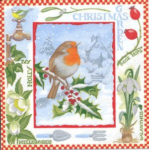 Jul fågel