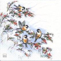 Vinterfåglar   kaf1038