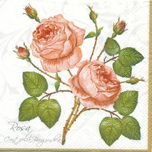 Fin liten ros