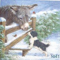 Åsna & hund  kaf1041