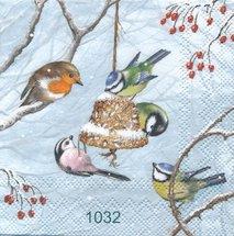 Småfåglar   kaf1032