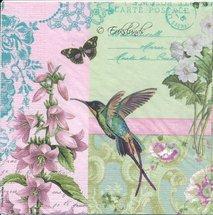 Collibri och blomma