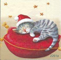Katt på kudde olika motiv   3004